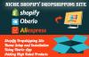为什么初入跨境电商要从Shopify+Dropshipping开始